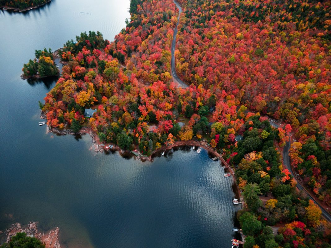 Places To Visit in Fall in Ontario