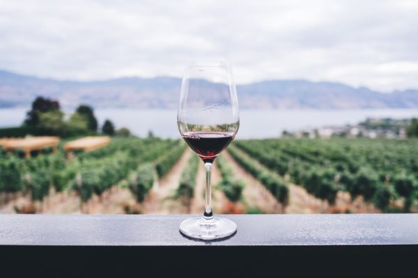 best wineries in prince edward county